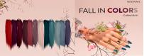 Colección Fall in Colors